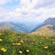 imagebild wanderlust-alphotel-kuhstadl-salzburg